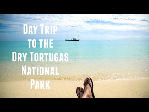 Day Trip to the Dry Tortugas National Park