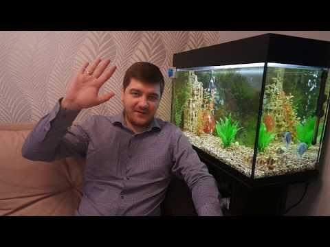 Как правильно установить аквариумный нагреватель