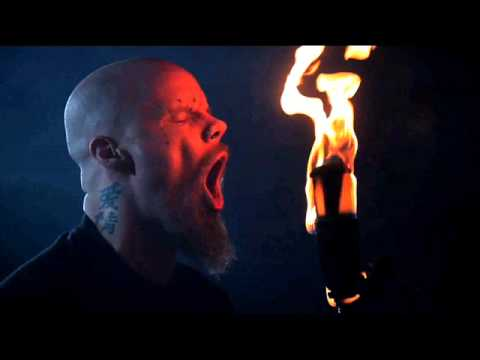 BEFORE THE DAWN - Phoenix Rising (One Man Band Cover) mp3