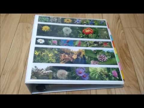 A Herbal Materia Medica: What It Is and How to Create One
