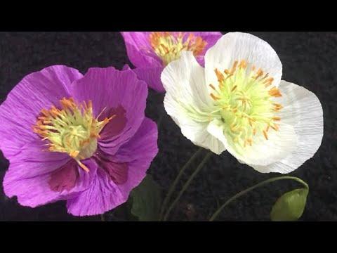 Bella's Craft/ How to make poppy flowers by crepe paper/Hướng dẫn làm hoa anh túc bằng giấy nhún