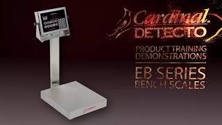 EB Bench Scales Training Video