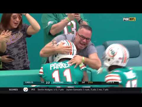 Ultimate Miami Dolphins 2019 Highlights