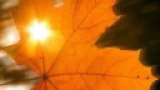 Autumn - Vivaldi
