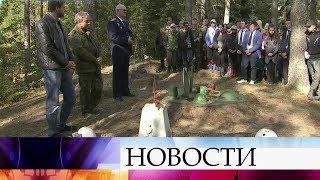 В Новгородской области обнаружен самолет и останки героев Великой Отечественной войны.
