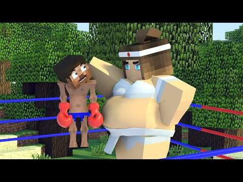 The Minecraft Life Of Alex And Steve : Noob Girl Vs Steve Pro  - Minecraft Animation