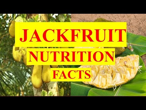 JACKFRUIT FRUIT NUTRITION FACTS AND HEALTH BENEFITS