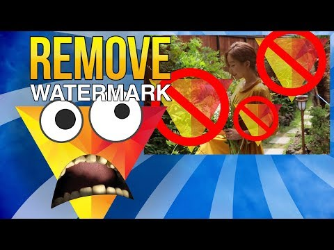 How To Remove Hitfilm Express Watermark