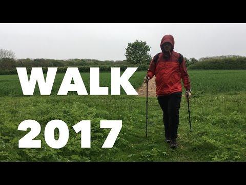 Why I Walk 5 Miles A Day Before Work