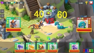 Enchant Dragon battle - another boss and best lv 40 vs 60 - dragon mania legends