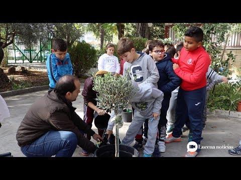 VÍDEO: Los peques del Colegio El Prado nos enseñan a plantar un árbol