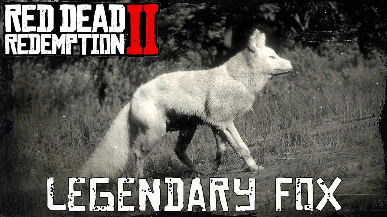 Red Dead Redemption 2 Legendary Animals fox
