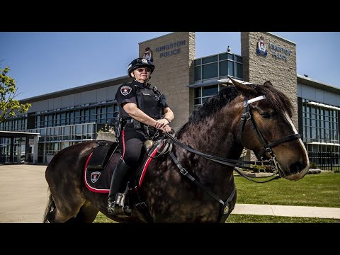 College Girl Runs Up, Smacks Police Horse, Receives Painful Justice