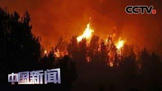 [中国新闻] 希腊:火情四起 强风致雅典附近林火难灭 | CCTV中文国际