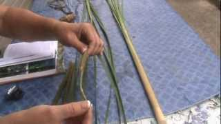 The Incredible Edible Cattail