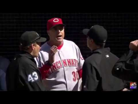 MLB Ejected Before The Game Starts