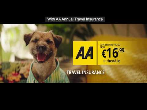 AA Travel Insurance - Who's Got Clever Travel Insurance?