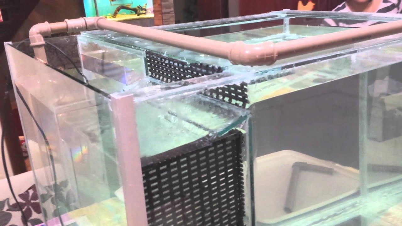 how to make fish embutido