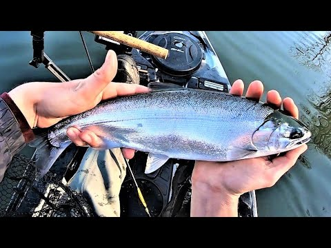 Indiana Kayak Fishing: Christmas Eve Coho Salmon 12/24/19