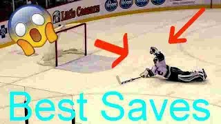 BEST NHL Saves Of 2016-2017 Season (HD)