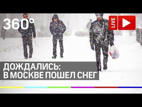 Дождались: в Москве пошёл снег. Прямая трансляция!