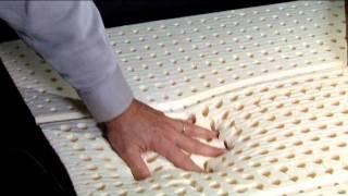 Latex Bedding Company ,  Revor, Euro Latex Mattress