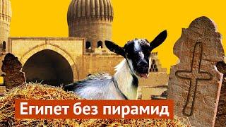 Нетуристический Каир: мусор, кладбище и свиньи