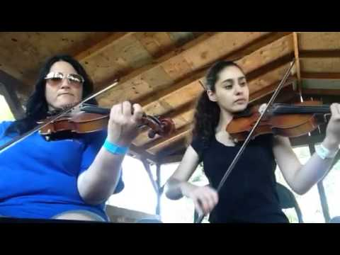 Day 225 - Little Black Moustache - Patti Kusturok's 365 Days of Fiddle Tunes