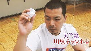 天竺鼠・川原チャンネル 「一か八か」
