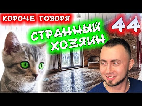 КОРОЧЕ ГОВОРЯ, МОЙ СТРАННЫЙ ХОЗЯИН 44 / Бездомный котенок Лайки / Соседка