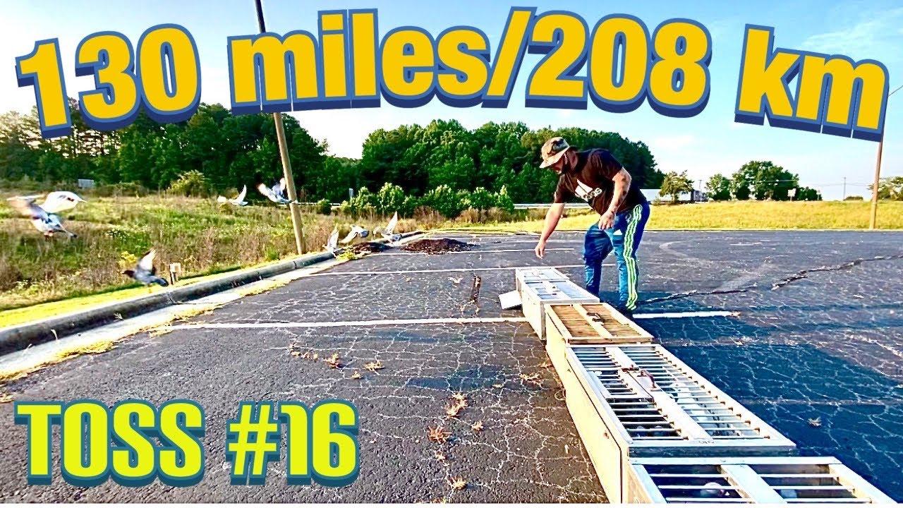 130 miles/208 km toss #16 - Virginia Beach