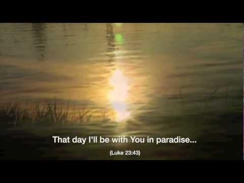 Michael Schroeder - Paradise