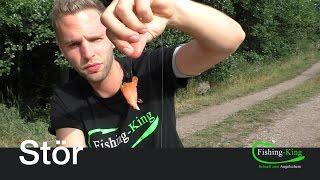 Stör-Angeln (Teil 4): Spezial-Köder mit Lachs | Fishing-King.de