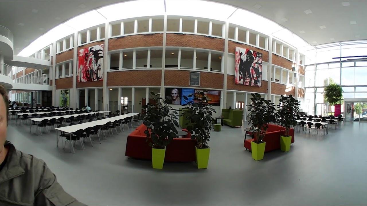 professionshøjskolen via university college