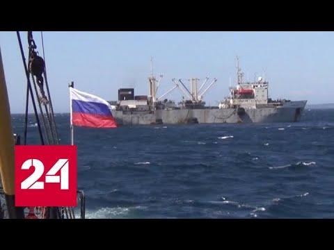 """Российские рыбаки """"подцепили"""" коронавирус: удар по экспорту или локальная проблема - Россия 24"""