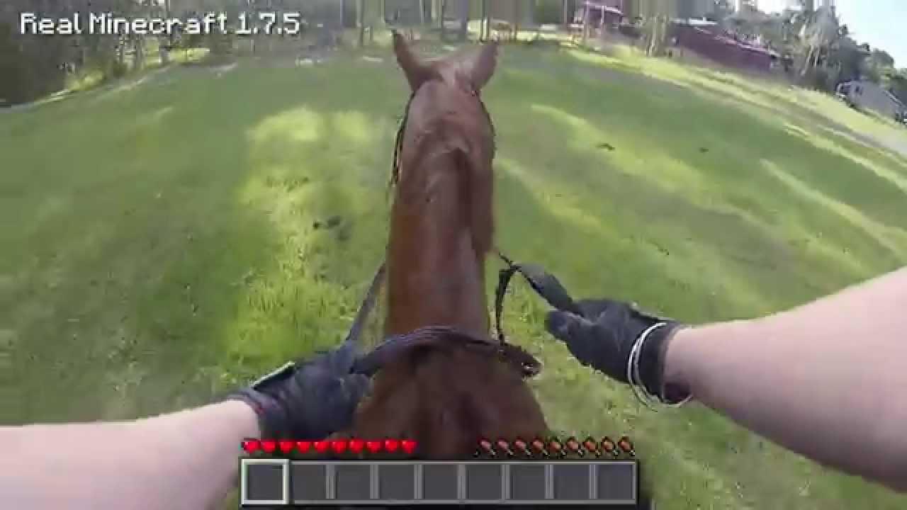 horse minecraft skin
