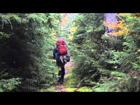 Cranberry Wilderness area backpack - owl visits our campsite