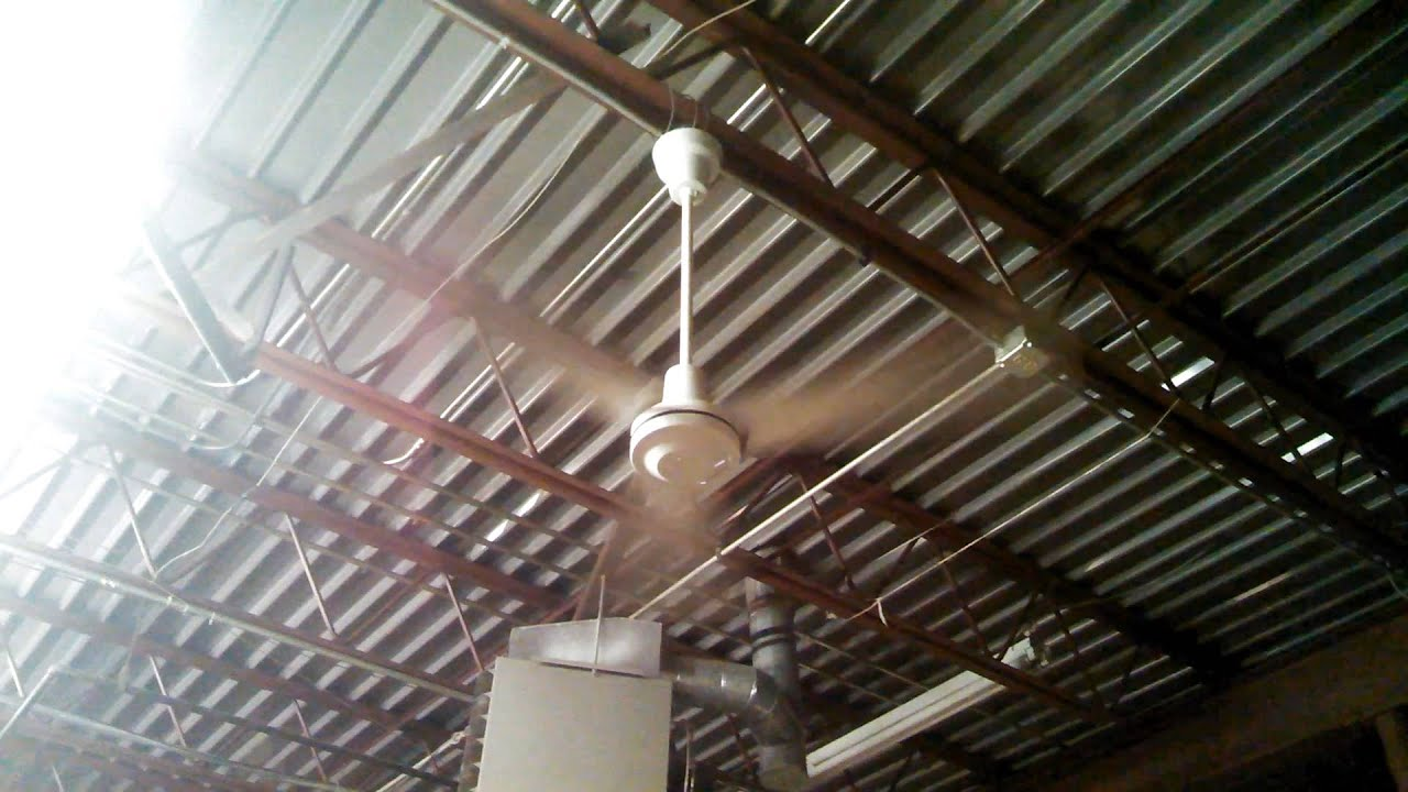 Daytonleading edge industrialcommercial ceiling fans in a thrift daytonleading edge industrialcommercial ceiling fans in a thrift store aloadofball Images