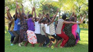 Harmonize ft Jah prayzah - Ndoenda
