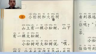 Курс чтения на китайском 1: Две сосны