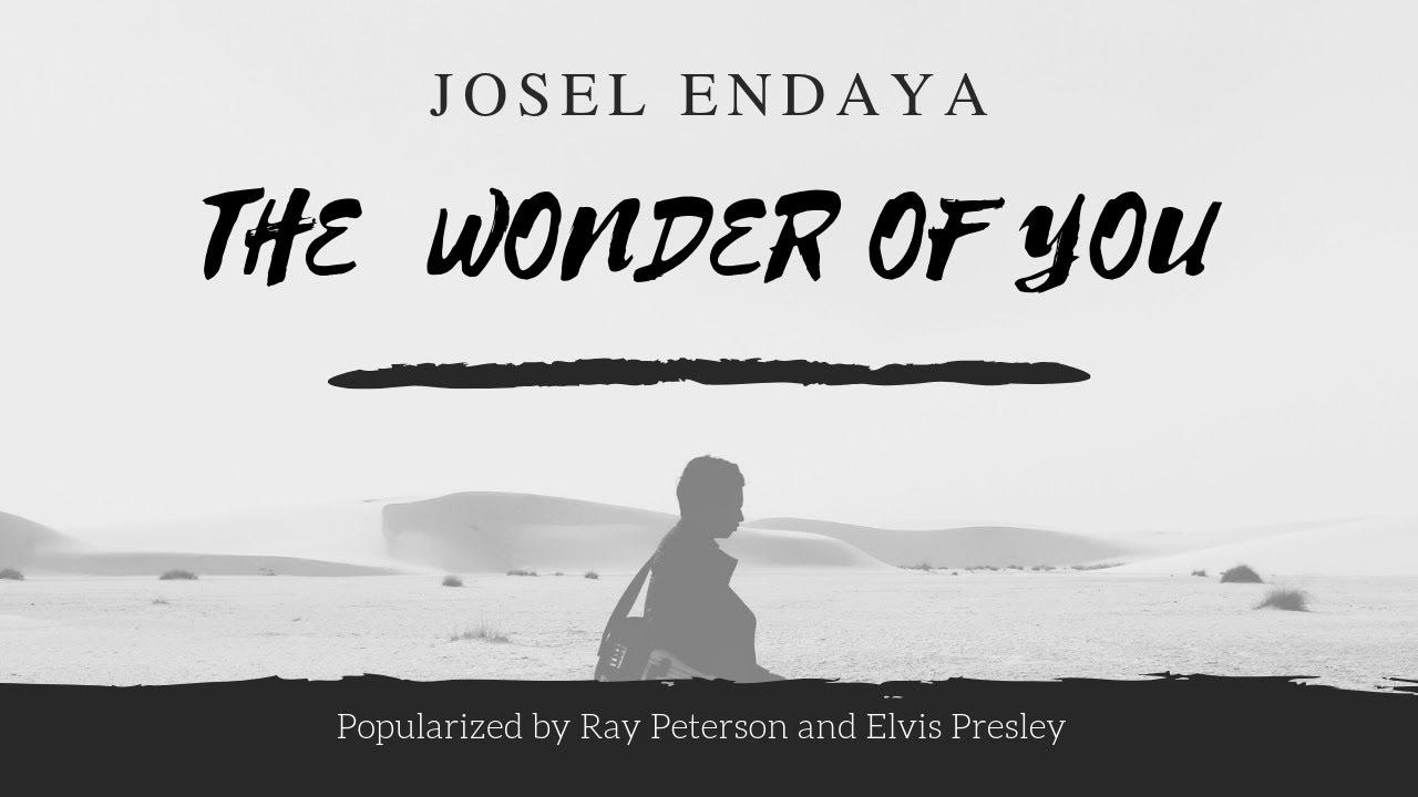 The Wonder of You + Lyrics (Ray Peterson / Elvis Presley