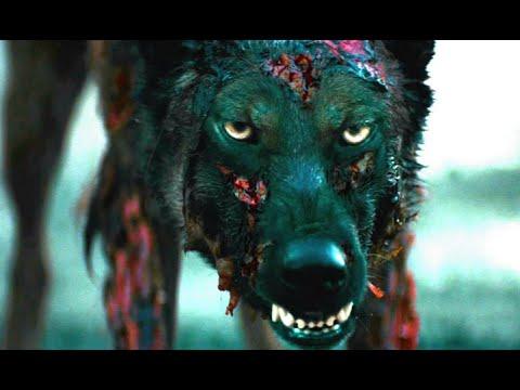 Ver Peliculas De Terro...I Am Legend Zombie Dog
