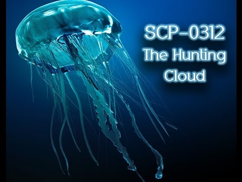 SCP-0 312: The Hunting Cloud