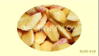 VLOG│부케액자 오리불고기볶음밥 삼성무풍에어컨 복숭아…