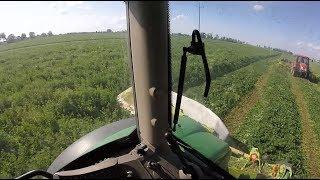 Podwórkowy Vlog #68 Pierwszy pokos zielonki z Claasem :D cały zestaw od KALCHEM