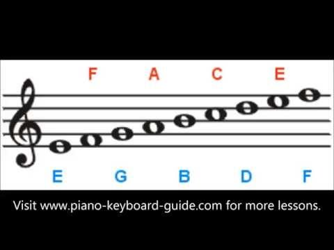 Treble Clef Notes - Lines and Spaces - How To Read Notes