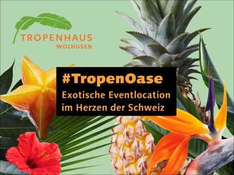 Tropenhaus Wolhusen | Eventlokale.ch