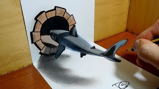3D Trick Art on Paper   Shark in the hole