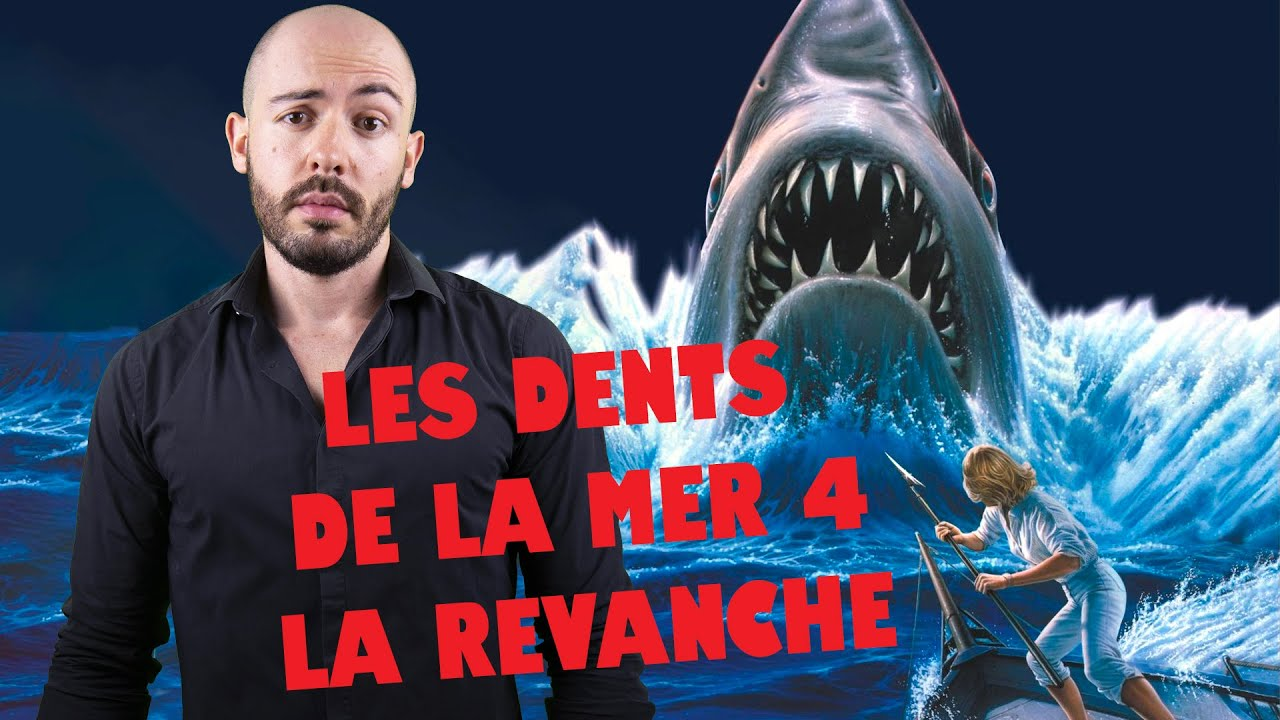 SO - Les Dents de la Mer 4 : La Revanche (Rétrospective Jaws 4/4)