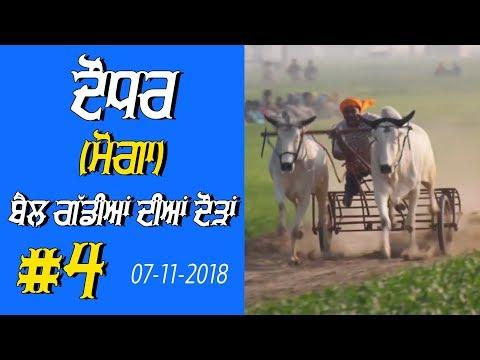 OX RACES #4 🔴 ਬੈਲ ਗੱਡੀਆਂ ਦੀਆਂ ਦੌੜਾਂ बैलों की दौड़ें  بیلوں کی دودن  at DAUDHAR Moga 17 01 2019